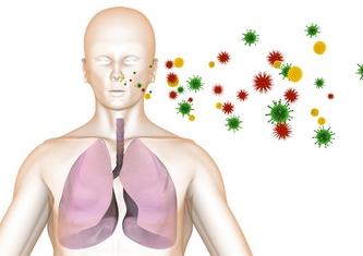Вирусы попадают в организм человека