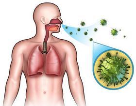 Микробы, попадающие в организм при дыхании
