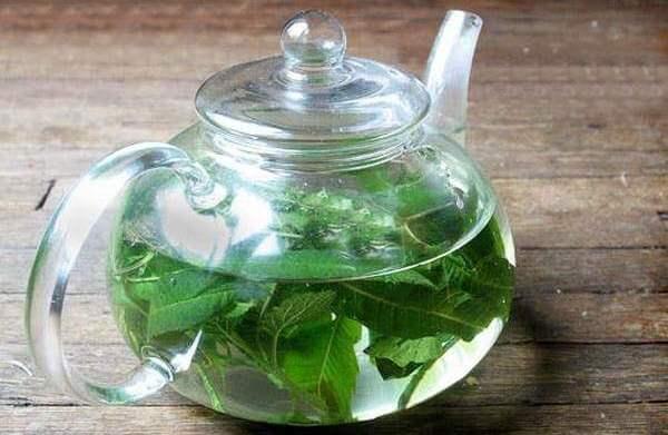 Травяной отвар в прозрачном заварочном чайнике